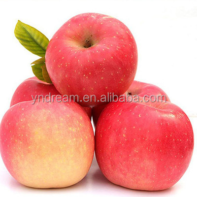 Cheap wholesale price red fuji apple fruit best selling from chinese supplier