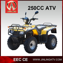 JLA-24-13--10 250cc buggy 4 wheel bikes for adults kawasaki mini bikes hot sale