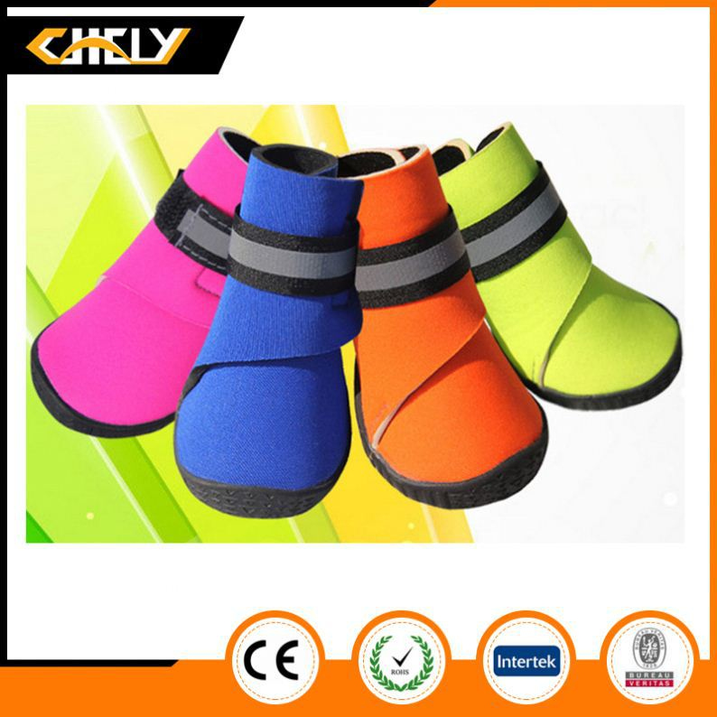 Hot Selling China Manufacturer wholesale OEM pet shoes
