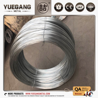 China Professional supply best quality 2mm stainless steel wire with competitive price