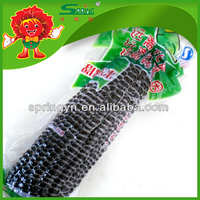 Vacuum-packed corn frozen purple corns for sale