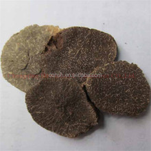 sliced shape dried truffle Tuber melanosporum slice French black truffle