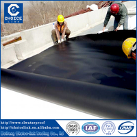 Waterproof material EVA/HDPE film sheet/ waterproof membrane