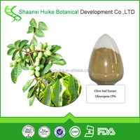 100% Natural Olive Leaf Extract for Olea Europaea L.