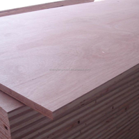 Waterproof Lumber Plywood Construction Real Estate