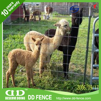 farm fence wire mesh cattle fence / wire mesh / wire farming fencing for hot sale