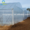 Low Price PE Plastic Large Tunnel