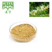 Supply Bottom Price Honeysuckle Flower Extract, Honeysuckle Flower Extract powder