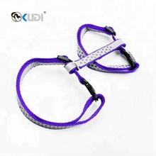 Reflective Cat Leash And Harness