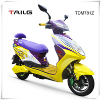China's electric motorbike strong steel frame moped bike 800W 48V lead acid battery dirt bike TDM781Z for sale