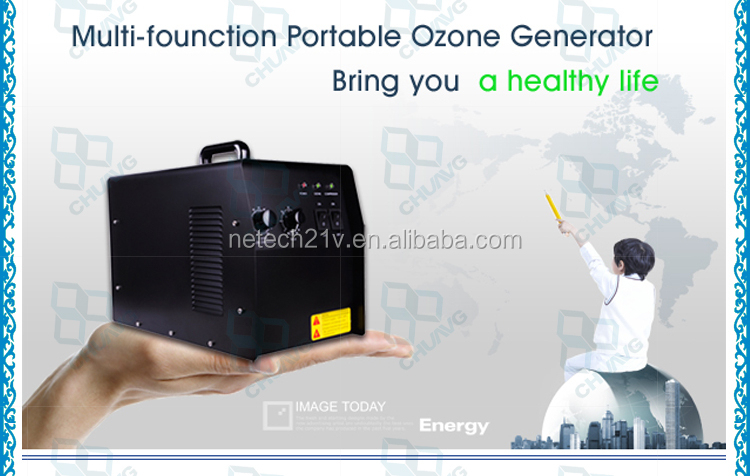 Portable air cooling ceramic 3g 5g 6g 7g small ozone generator air smell for hotels