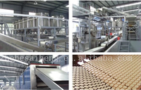 2015 SH 7.5t/24h Large Capacity Low Cost Snow Rice Maker/Snow Rice Cracker/Cake Production Line