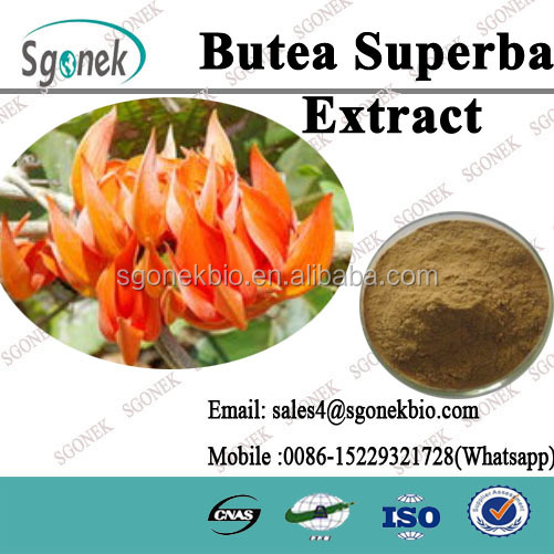 100% Natural Herbal Sex Products Butea Superba Extract