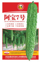 New products F1 bitter gourds hybrid bitter melon