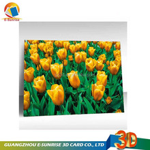 nature print 3d lenticular pictures of animal buildings flowers