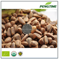 Cheap Pine Nuts Prices/Chinese Pinenut Kernels