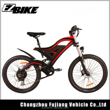 48V E Bike Battery in Frame with Bafang Hub Brushless Motor