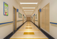 Commercial pvc flooring with Homogeneous Flooring roll