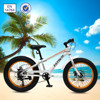 "Fashionable design fat tire bikes 20"" for children"