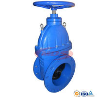 Cast Iron Gate Valves Gear Operated