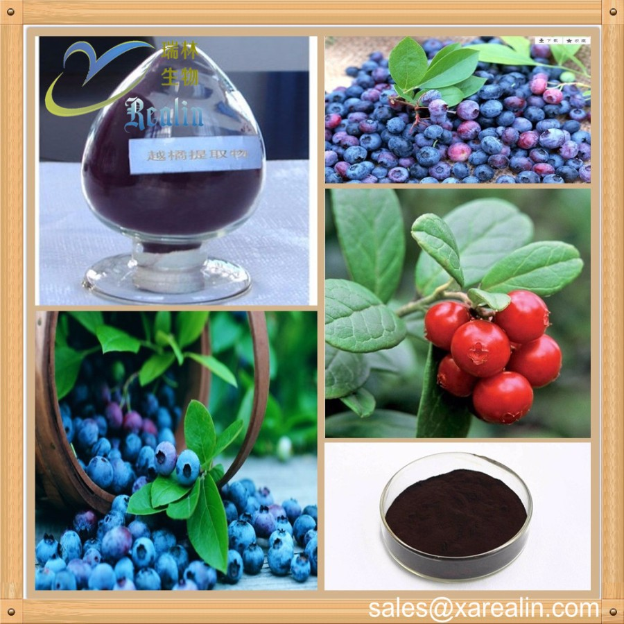 Super Antioxidants 100% Natural Plant Extract 25% anthocyanins European Bilberry Extract powder