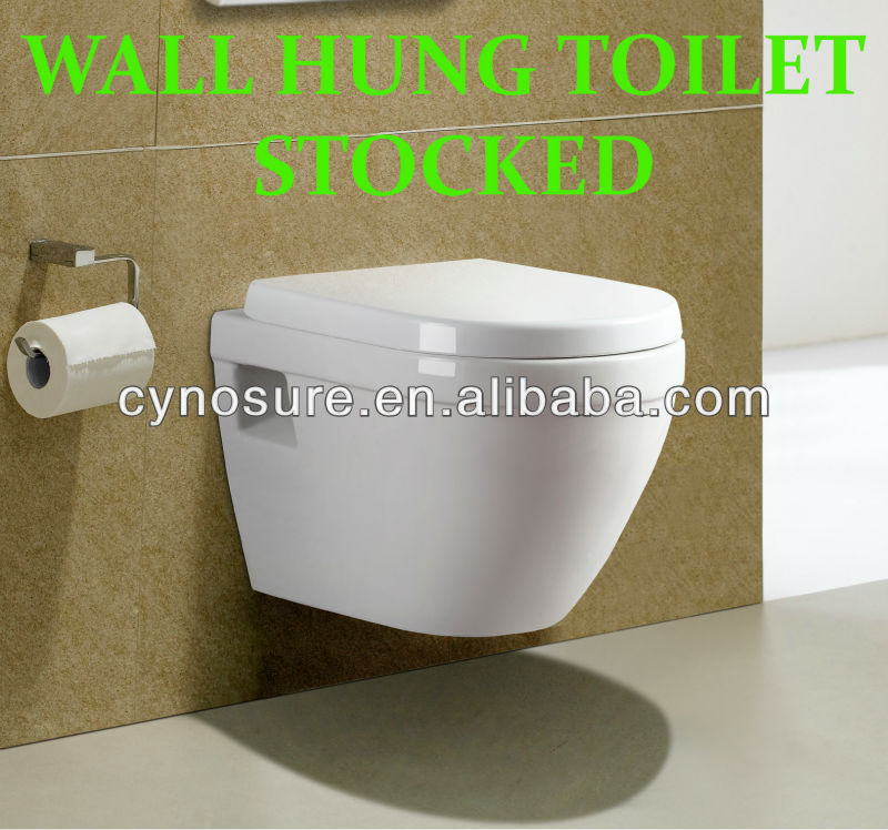 Stocked Wall Hung Toilet