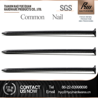 q195/q235 all sizes common nail iron nail factory