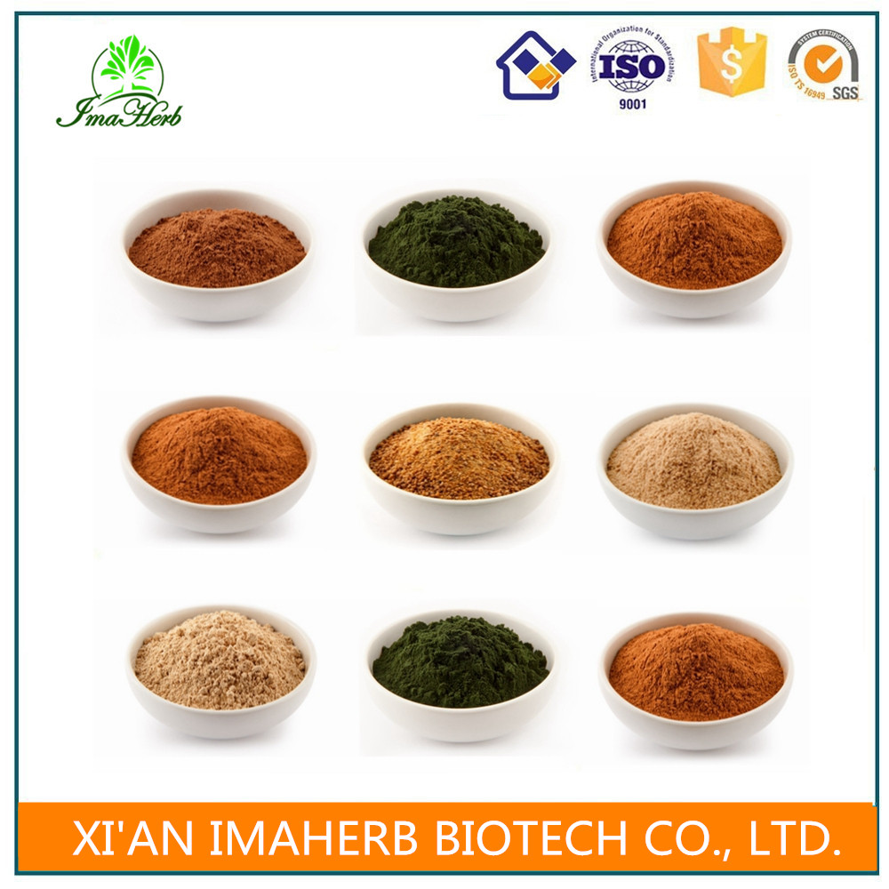 ISO Appreved Nature actaea racemosa extract