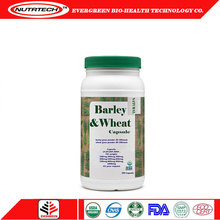 GMP factory supplied organic sante barley pure wheat grass powder capsule with Private Label