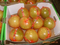 Factory Promotion Price of Honey Pomelo Fruits