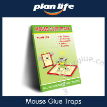 Mouse Glue Boards - Non-toxic Glue Traps For Birds Insects Spiders Lizard Mice Snakes and more