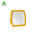 UL844 ATEX canopy 5yrs warranty led anti-explosive canopy light(UL/CUL)