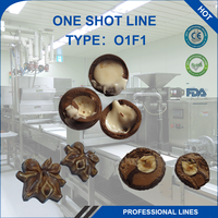 One-Shot Mini Chocolate Making Machinery Line