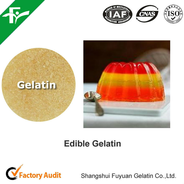 Powder Dosage Form and Nutrition Enhancers Type Edible Gelatin/ Food Grade Gelatin Kosher