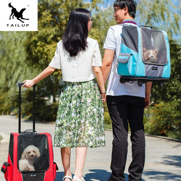 Wholesale Stock Pet appliance and New Pet <strong>dog</strong>, cat back bag nest, luggage la gan xiang outdoor travel out supplies