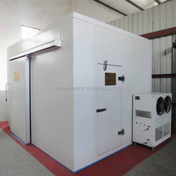 Portable Installation and Compressor Feature cold storage room