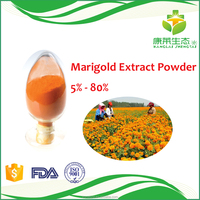 Low Price Marigold Extract Lutein Powder 10% 20% Food Grade With Free Sample 20g
