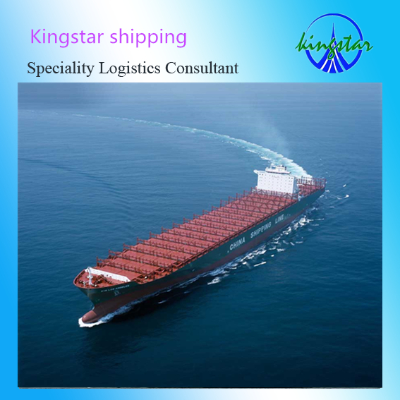 international logistics for sea shipping service from shenzhen/shanghai/qingdao to chennai