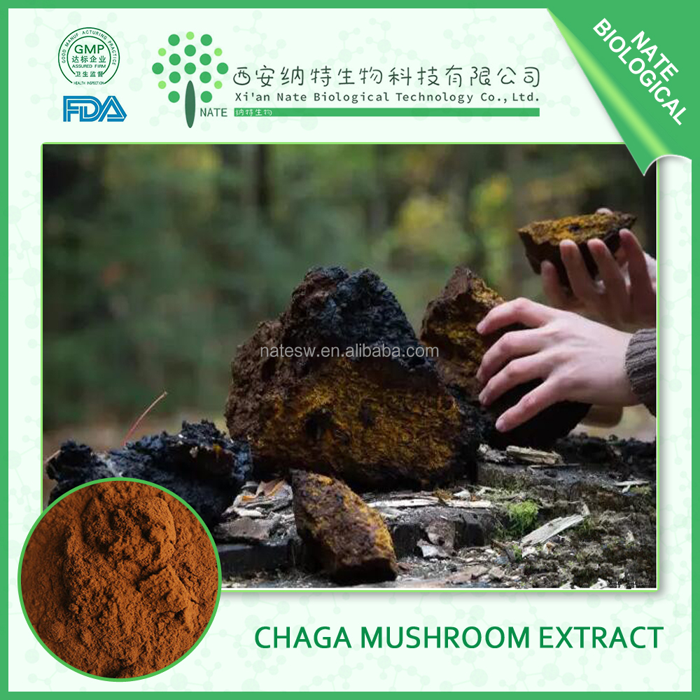 Factory Supply bodybuilding supplements Natural Chaga Extract 30% Polysaccharide