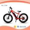 350w brushless hub motor new model e cycle/fat tire electric bike/chopper e-bicycle