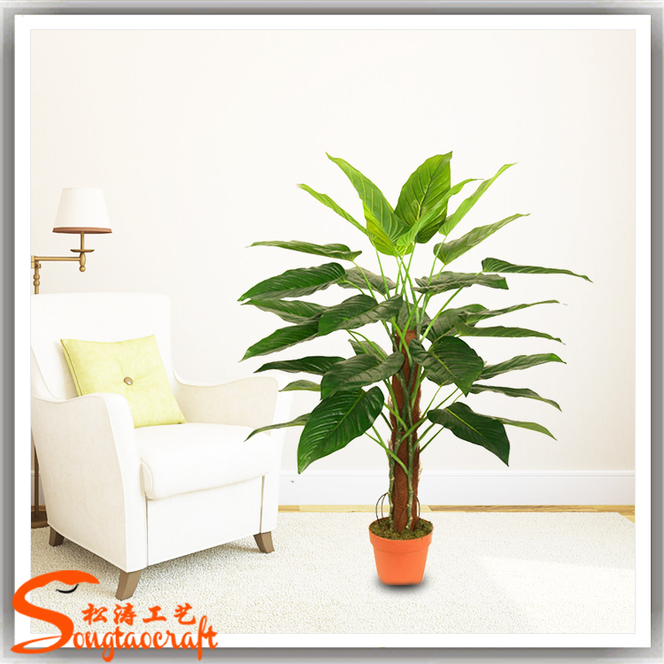 Types Of Artificial Evergreen Houseplant Dracaena Fragrans