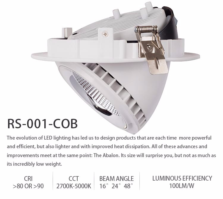 RS-001-COB-Series_02.jpg