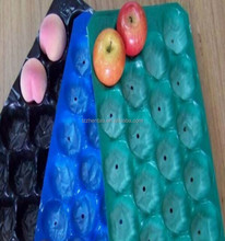 custom-made recycled food standard plastic packaging fruit cover tray