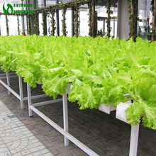 2017 Commercial Good Quality Hydroponic NFT For Sale