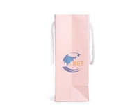 Design professional china grocery paper bags