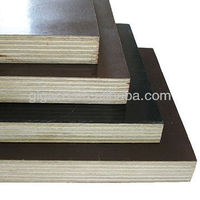 best price Hebei building construction materials/plywood sheet