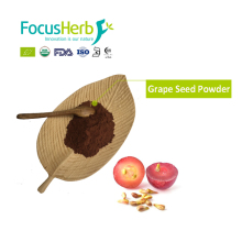 Focus Herb Proanthocyanidins 95% Grape Seed Extract