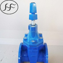 BS5163 resilient soft seat non-rising stem din china ductile iron gate valve