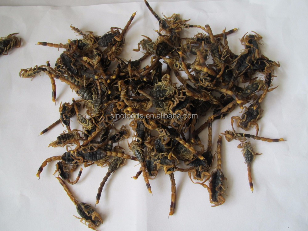 quan xie hot Chinese herbs medicine dried scorpion