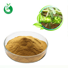 High quality herbal products Tribulus terrestris extract powder